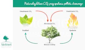 Ekologiczne walory pelletu